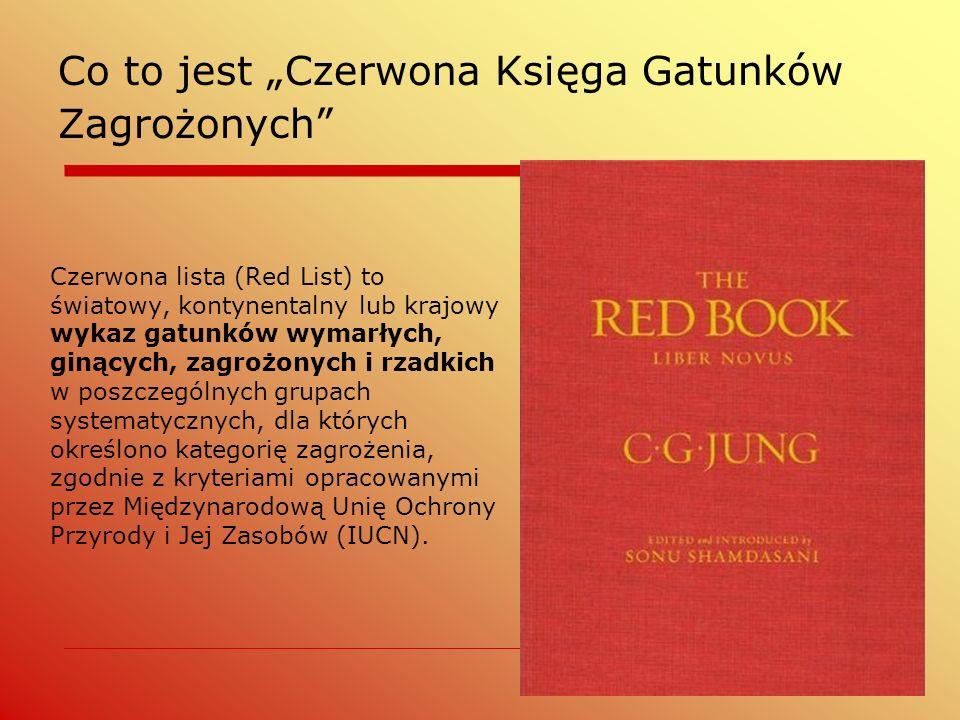 """Co to jest """"Czerwona Księga Gatunków Zagrożonych"""" Czerwona lista (Red List) to światowy, kontynentalny lub krajowy wykaz gatunków wymarłych, ginących,"""