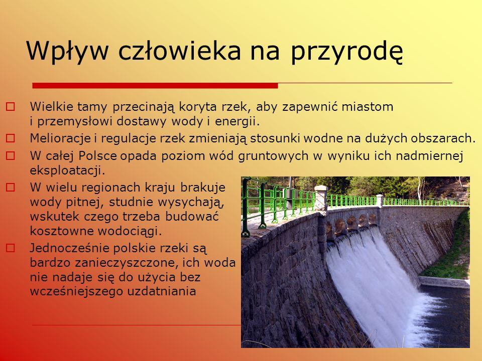  Wielkie tamy przecinają koryta rzek, aby zapewnić miastom i przemysłowi dostawy wody i energii.  Melioracje i regulacje rzek zmieniają stosunki wod