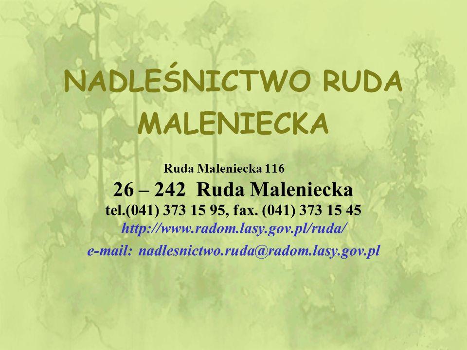 NADLEŚNICTWO RUDA MALENIECKA Ruda Maleniecka 116 26 – 242 Ruda Maleniecka tel.(041) 373 15 95, fax.