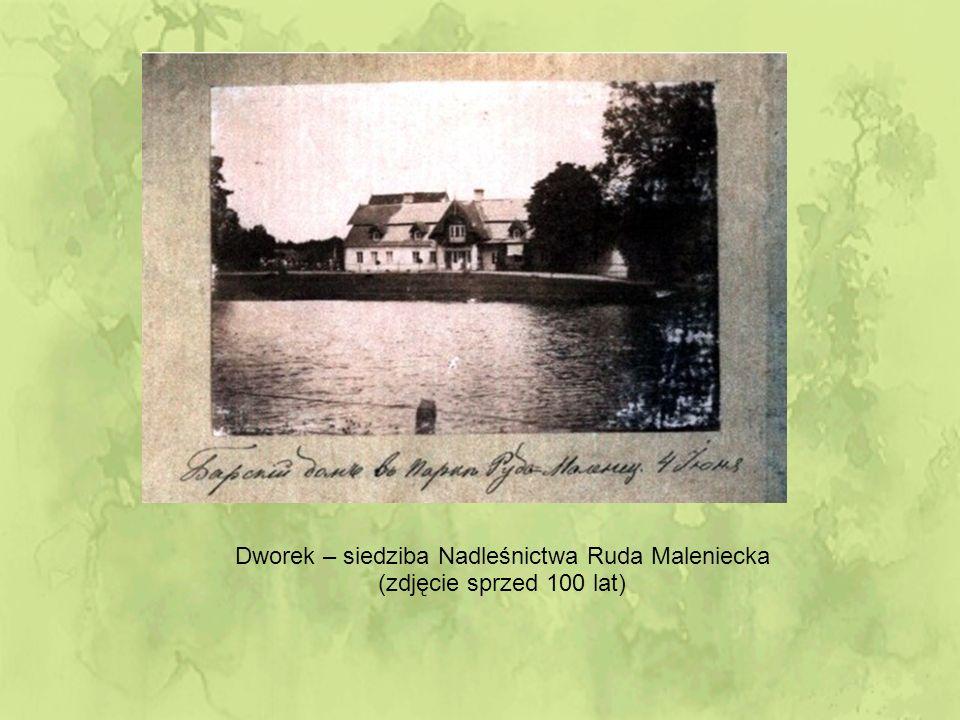 Dworek – siedziba Nadleśnictwa Ruda Maleniecka (zdjęcie sprzed 100 lat)