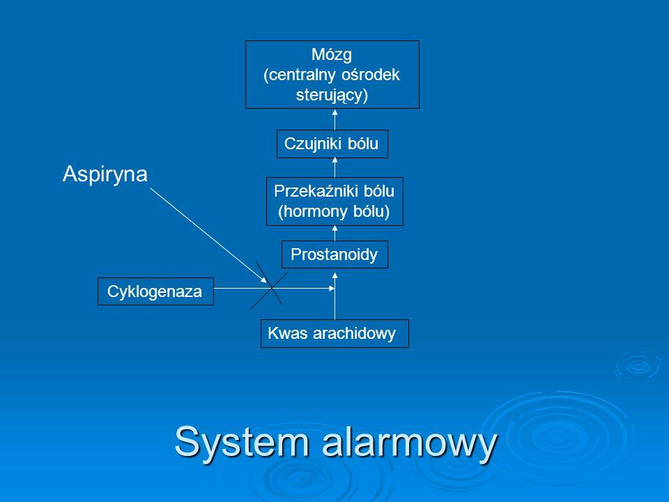 System alarmowy Kwas arachidowy Przekaźniki bólu (hormony bólu) Prostanoidy Czujniki bólu Mózg (centralny ośrodek sterujący) Aspiryna Cyklogenaza