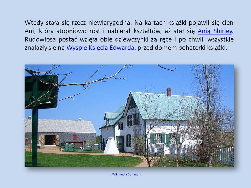 - To jest Magiczny domek na drzewie.Magiczny domek na drzewie Zachodzą tutaj czasem Wasi rówieśnicy – rodzeństwo Jacek i Ania.