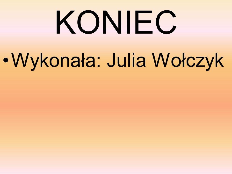 KONIEC Wykonała: Julia Wołczyk