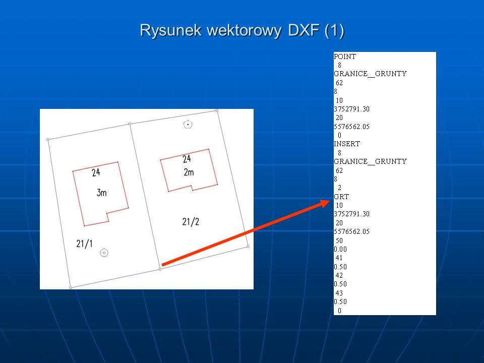 Rysunek wektorowy DXF (1)