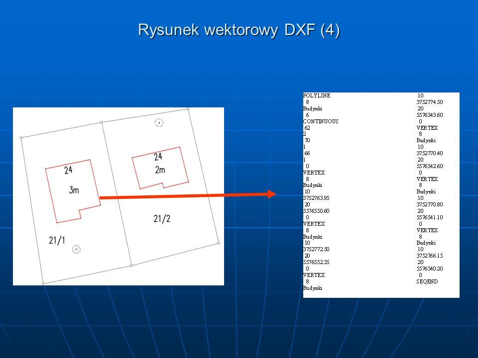 Rysunek wektorowy DXF (4)
