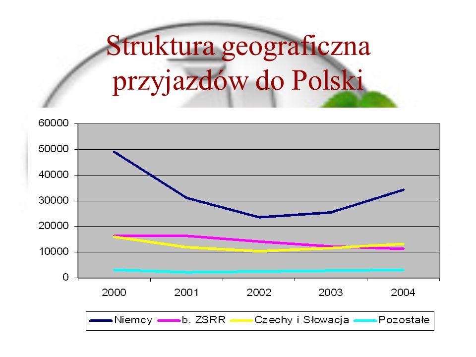 Struktura geograficzna przyjazdów do Polski