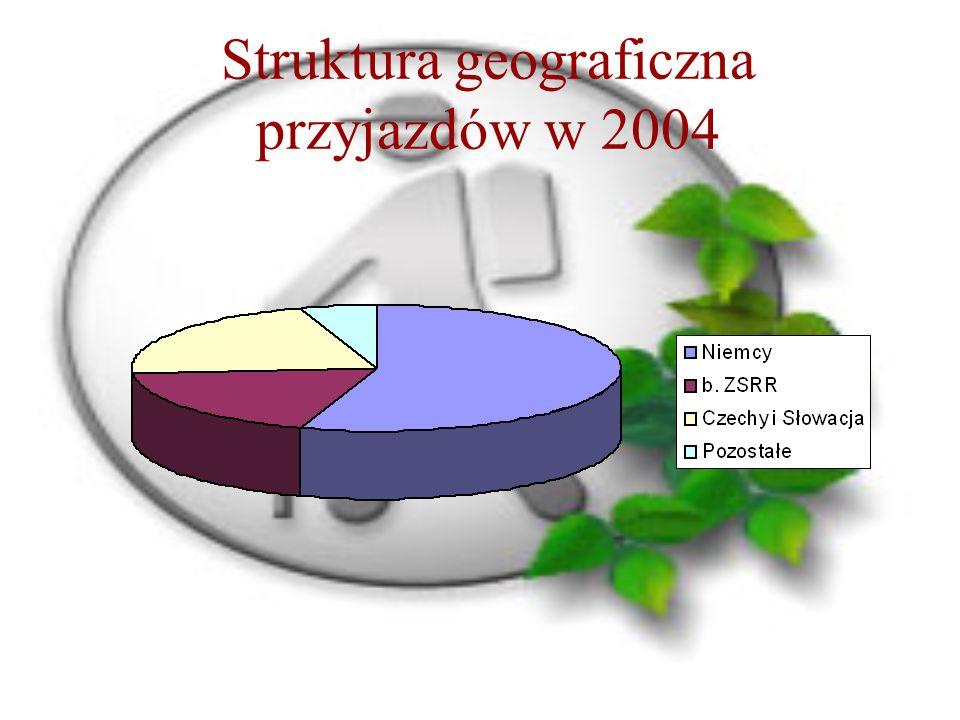 Struktura geograficzna przyjazdów w 2004