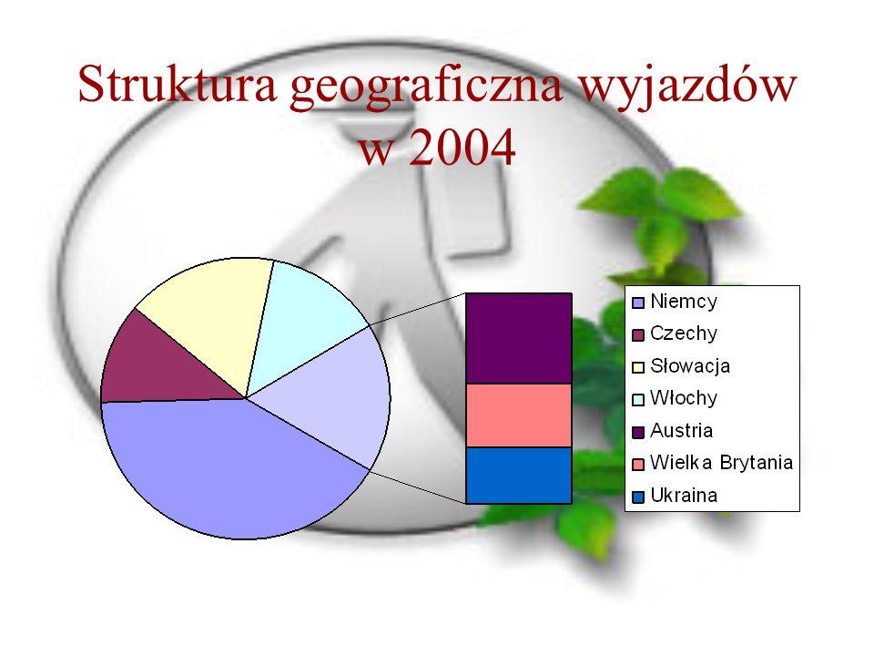 Struktura geograficzna wyjazdów w 2004