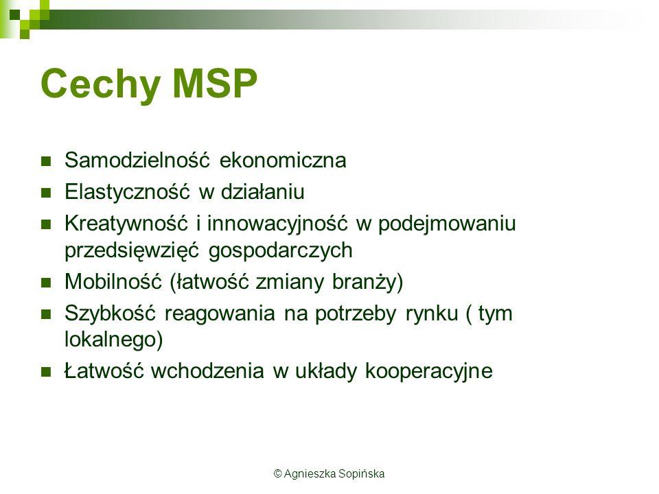 Cechy MSP Samodzielność ekonomiczna Elastyczność w działaniu Kreatywność i innowacyjność w podejmowaniu przedsięwzięć gospodarczych Mobilność (łatwość zmiany branży) Szybkość reagowania na potrzeby rynku ( tym lokalnego) Łatwość wchodzenia w układy kooperacyjne © Agnieszka Sopińska