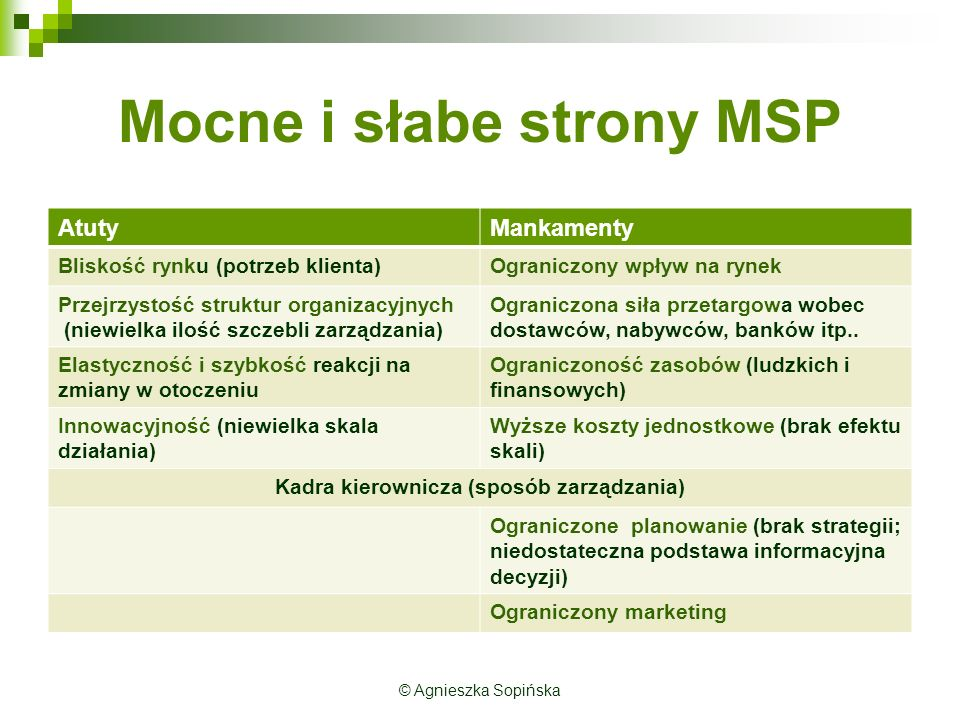Mocne i słabe strony MSP AtutyMankamenty Bliskość rynku (potrzeb klienta)Ograniczony wpływ na rynek Przejrzystość struktur organizacyjnych (niewielka