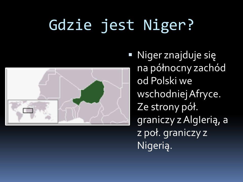 Gdzie jest Niger. Niger znajduje się na północny zachód od Polski we wschodniej Afryce.