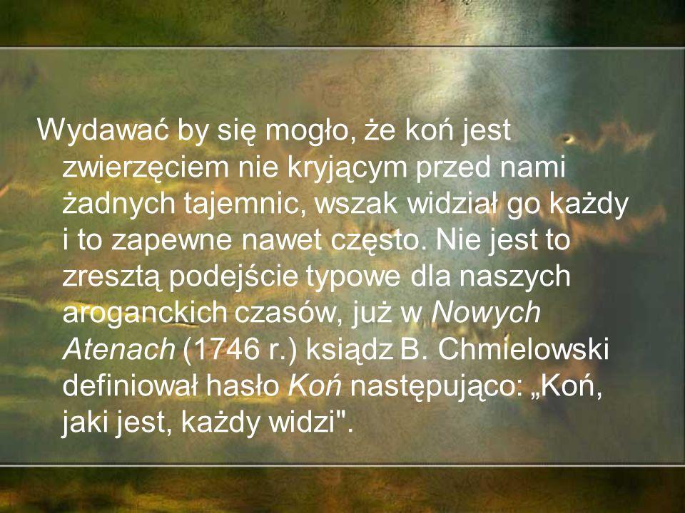 """XII Zlot krajoznawczo – ekologiczno – edukacyjny- """"KONIE Dorohucza, 8 października 2015"""