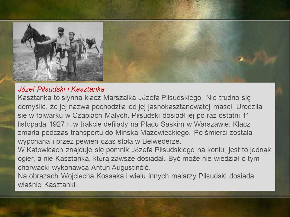 J ó zef Piłsudski i Kasztanka Kasztanka to słynna klacz Marszałka J ó zefa Piłsudskiego.