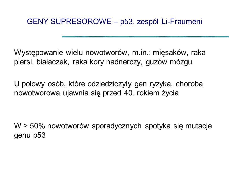 GENY SUPRESOROWE – p53, zespół Li-Fraumeni Występowanie wielu nowotworów, m.in.: mięsaków, raka piersi, białaczek, raka kory nadnerczy, guzów mózgu U połowy osób, które odziedziczyły gen ryzyka, choroba nowotworowa ujawnia się przed 40.