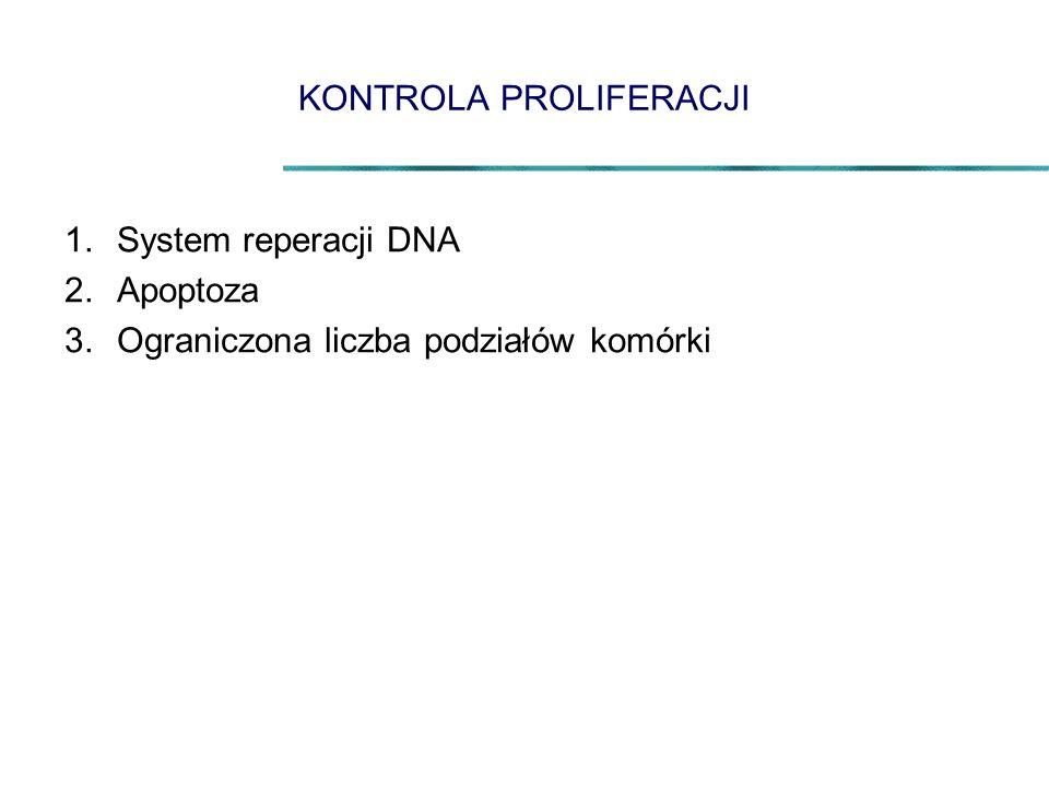 KONTROLA PROLIFERACJI 1.System reperacji DNA 2.Apoptoza 3.Ograniczona liczba podziałów komórki