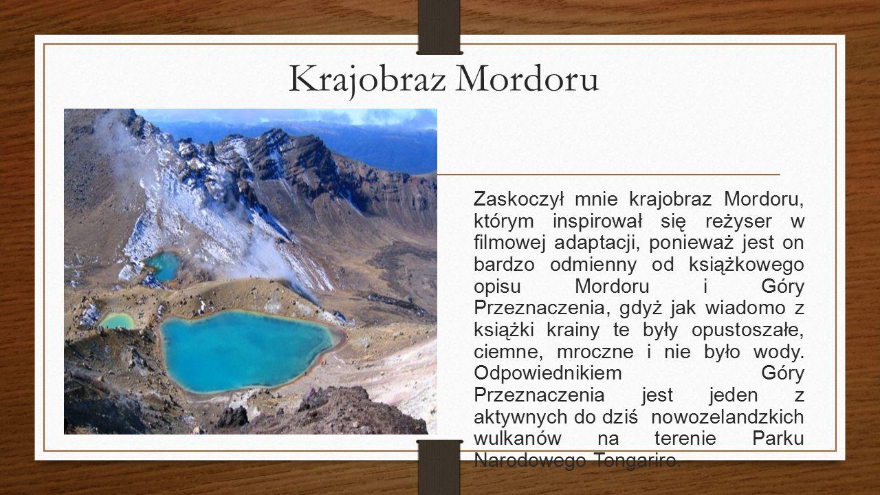 Krajobraz Mordoru Zafascynował mnie ten krajobraz, ponieważ jest on bardzo inny w porównaniu do książkowego opisu Mordoru i Góry Przeznaczenia, gdyż j