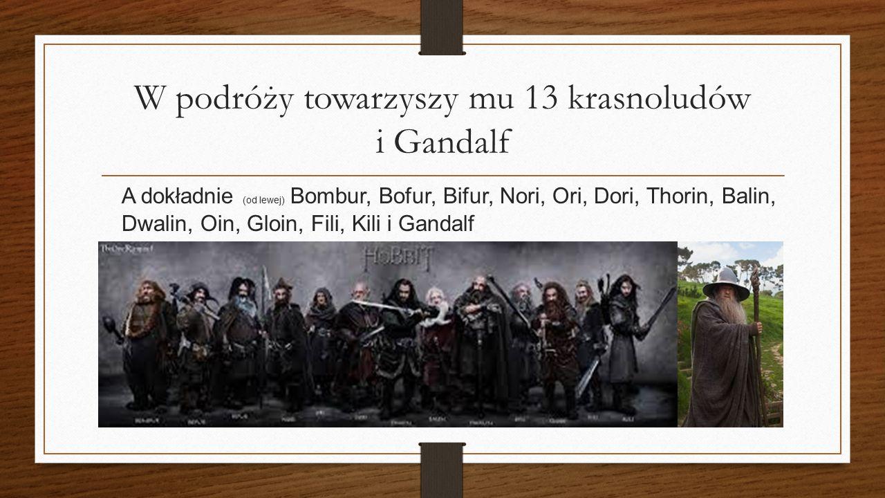 W podróży towarzyszy mu 13 krasnoludów i Gandalf A dokładnie (od lewej) Bombur, Bofur, Bifur, Nori, Ori, Dori, Thorin, Balin, Dwalin, Oin, Gloin, Fili, Kili i Gandalf