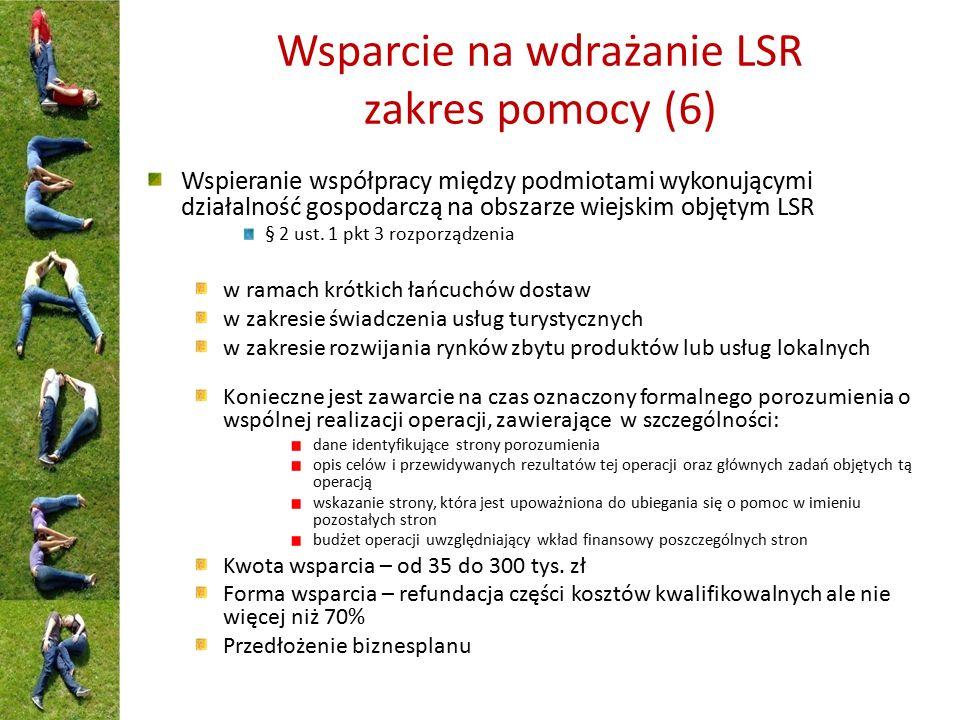 Wsparcie na wdrażanie LSR zakres pomocy (6) Wspieranie współpracy między podmiotami wykonującymi działalność gospodarczą na obszarze wiejskim objętym