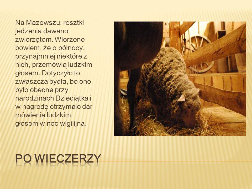 Dawniej po Wieczerzy w wielu częściach Polski praktykowano różne zwyczaje.