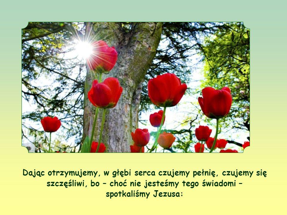 A za każdym razem owocem tego będzie nie tylko to, że przyniesiemy radość drugiemu, ale że również my sami doświadczymy jeszcze większej radości.
