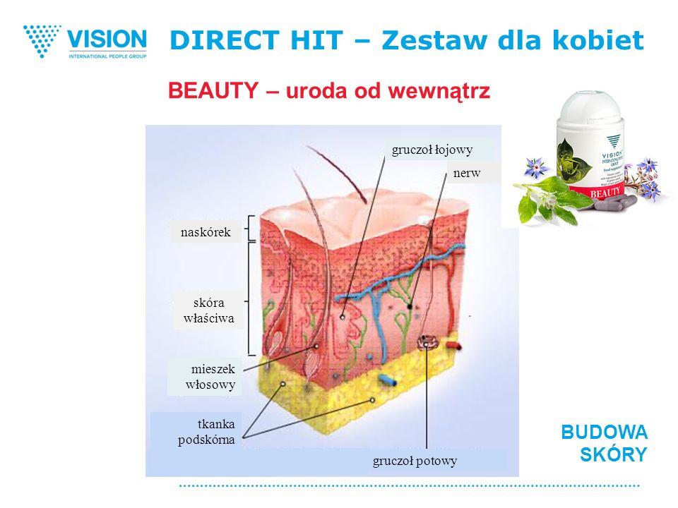 DIRECT HIT – Zestaw dla kobiet BUDOWA SKÓRY BEAUTY – uroda od wewnątrz naskórek skóra właściwa mieszek włosowy tkanka podskórna gruczoł potowy gruczoł łojowy nerw
