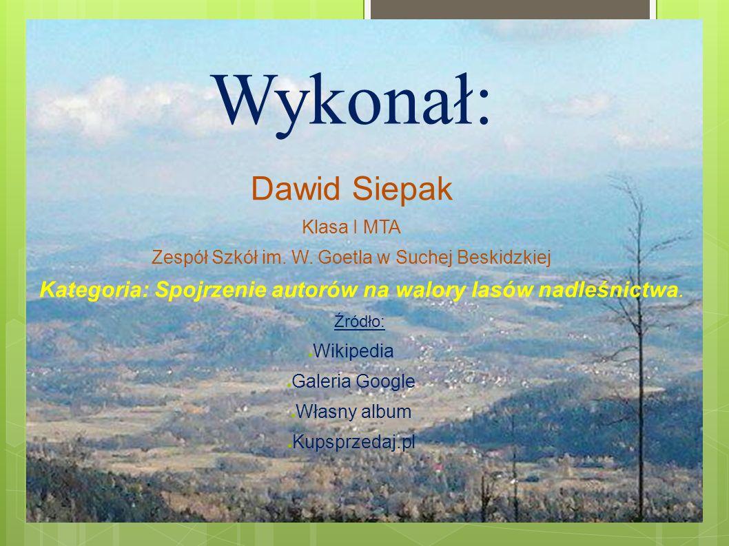 Wykonał: Dawid Siepak Klasa I MTA Zespół Szkół im.