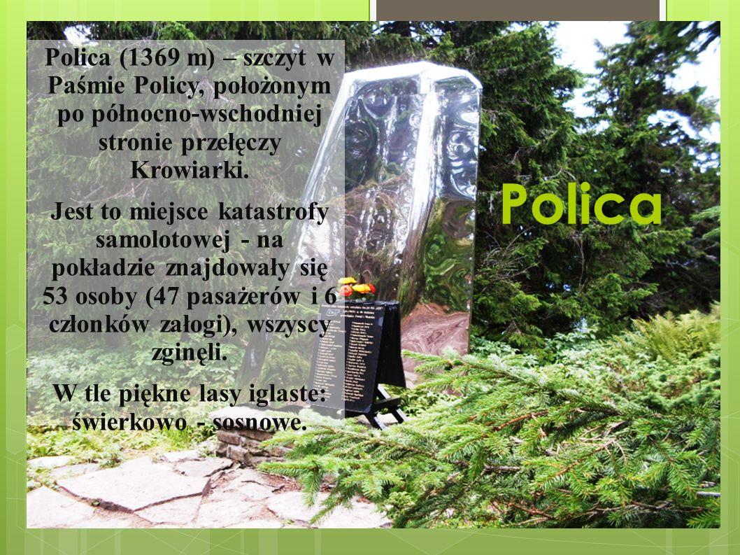 Polica Polica (1369 m) – szczyt w Paśmie Policy, położonym po północno-wschodniej stronie przełęczy Krowiarki.