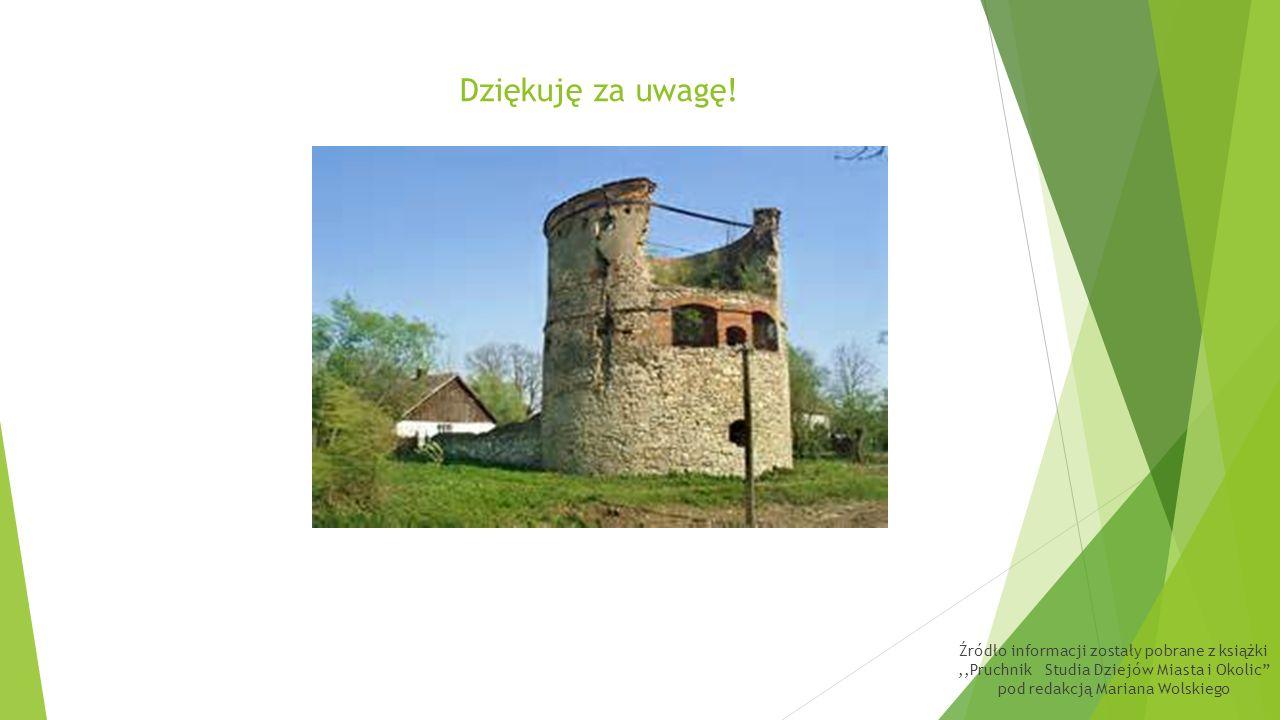 Walory zabytkowe pozostałości zespołu zamkowego z końca XVI wieku w Pruchniku pomimo fatalnego stanu technicznego są nadal cenne i unikatowe.