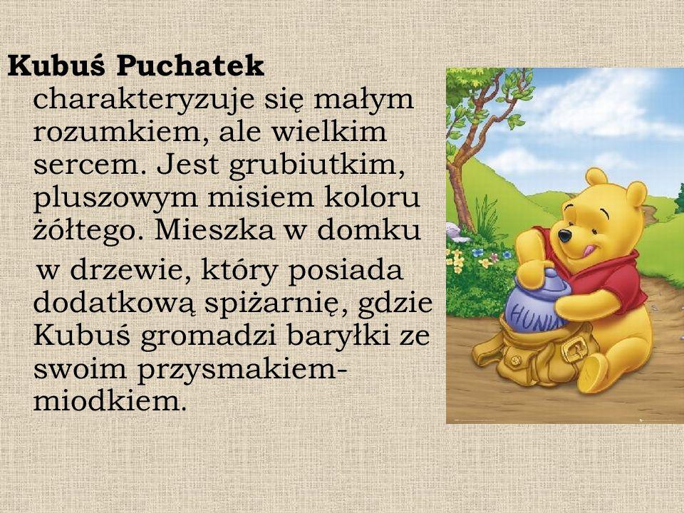 Kubuś Puchatek charakteryzuje się małym rozumkiem, ale wielkim sercem. Jest grubiutkim, pluszowym misiem koloru żółtego. Mieszka w domku w drzewie, kt