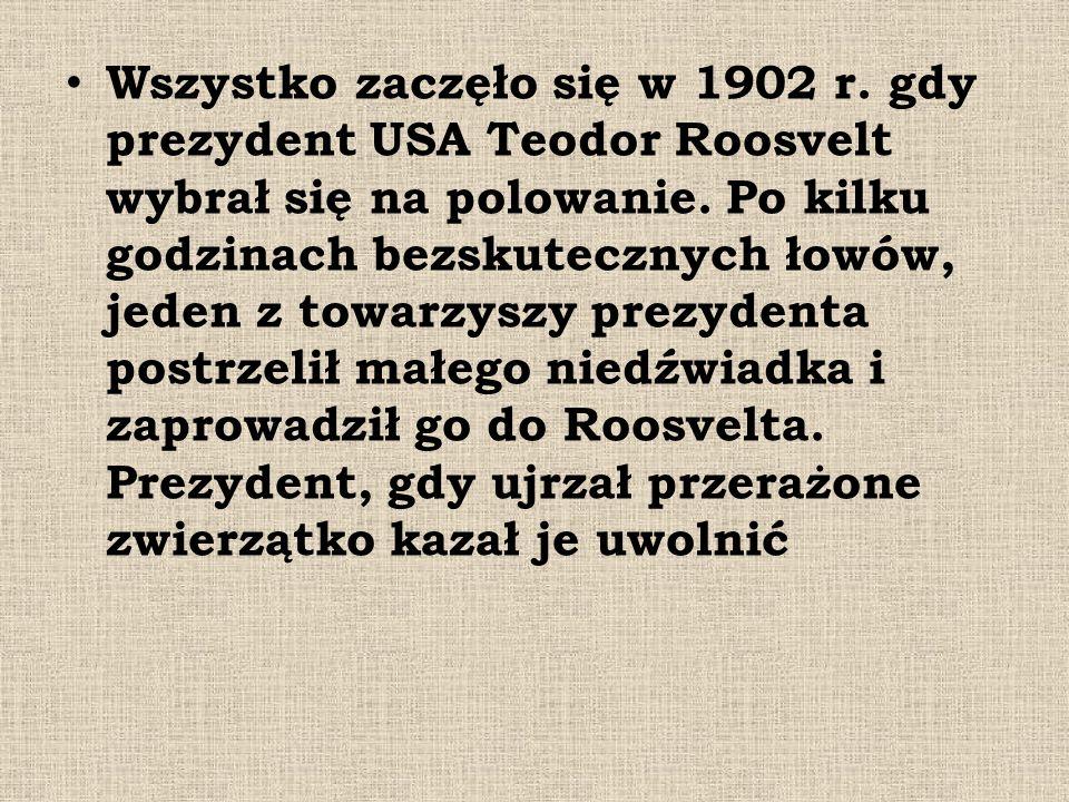 Wszystko zaczęło się w 1902 r. gdy prezydent USA Teodor Roosvelt wybrał się na polowanie. Po kilku godzinach bezskutecznych łowów, jeden z towarzyszy
