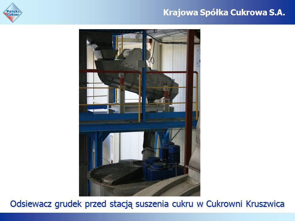 Odsiewacz grudek przed stacją suszenia cukru w Cukrowni Kruszwica Krajowa Spółka Cukrowa S.A.
