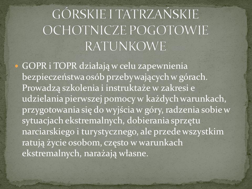 GOPR i TOPR działają w celu zapewnienia bezpieczeństwa osób przebywających w górach.
