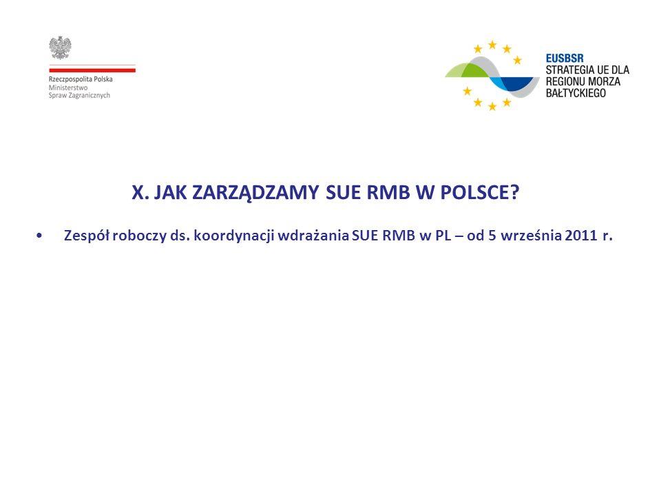 X. JAK ZARZĄDZAMY SUE RMB W POLSCE? Zespół roboczy ds. koordynacji wdrażania SUE RMB w PL – od 5 września 2011 r.