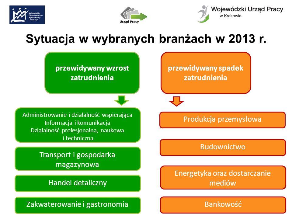 Sytuacja w wybranych branżach w 2013 r.