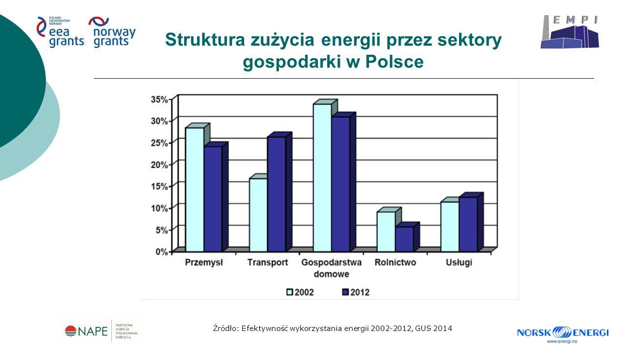 Struktura zużycia energii przez sektory gospodarki w Polsce Źródło: Efektywność wykorzystania energii 2002-2012, GUS 2014