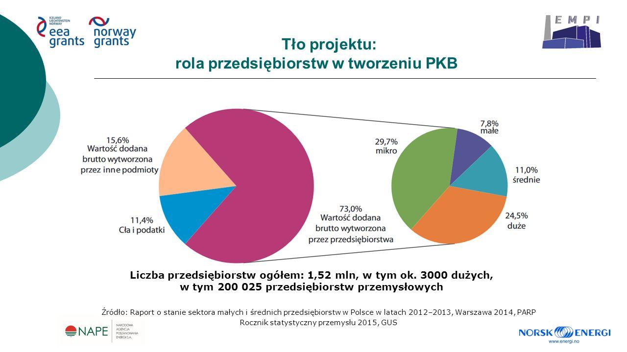 Tło projektu: rola przedsiębiorstw w tworzeniu PKB Źródło: Raport o stanie sektora małych i średnich przedsiębiorstw w Polsce w latach 2012–2013, Warszawa 2014, PARP Rocznik statystyczny przemysłu 2015, GUS Liczba przedsiębiorstw ogółem: 1,52 mln, w tym ok.