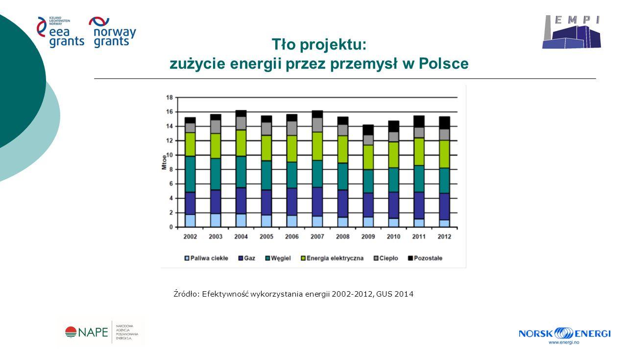Tło projektu: zużycie energii przez przemysł w Polsce Źródło: Efektywność wykorzystania energii 2002-2012, GUS 2014
