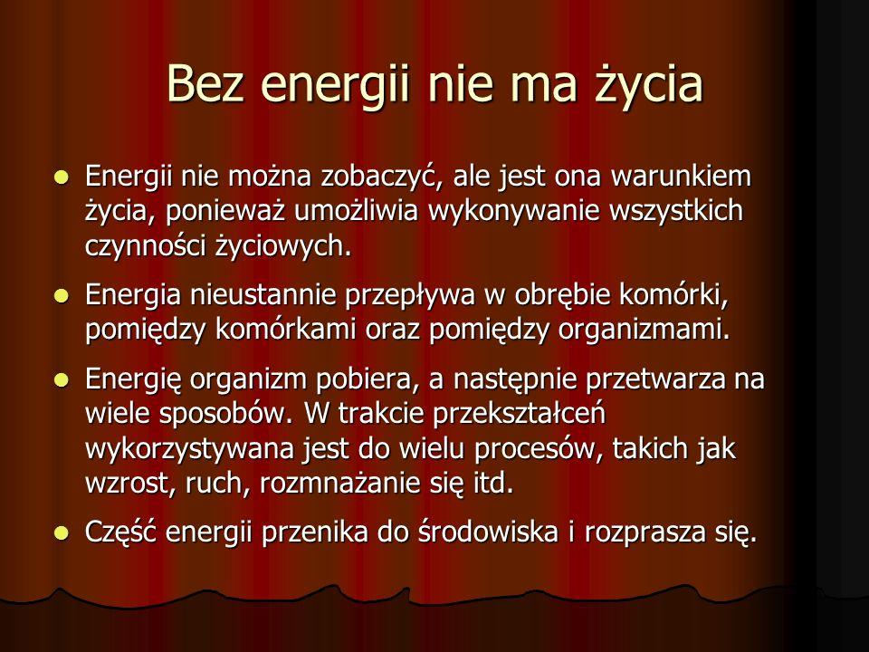 Bez energii nie ma życia Energii nie można zobaczyć, ale jest ona warunkiem życia, ponieważ umożliwia wykonywanie wszystkich czynności życiowych.