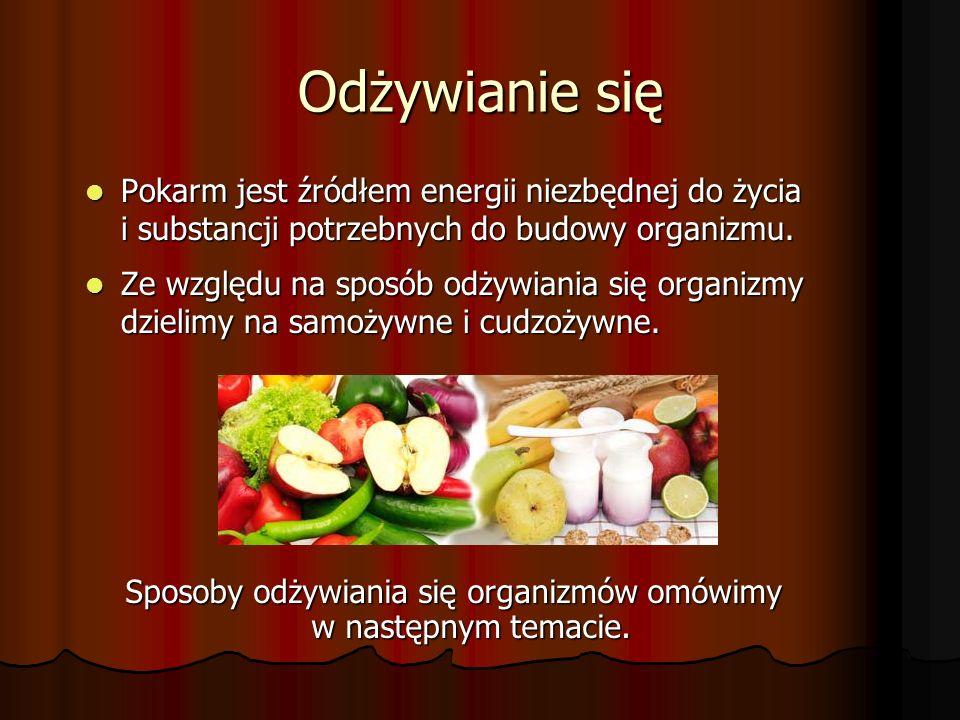 Odżywianie się Pokarm jest źródłem energii niezbędnej do życia i substancji potrzebnych do budowy organizmu.