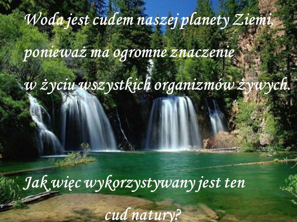 Woda jest cudem naszej planety Ziemi, ponieważ ma ogromne znaczenie w życiu wszystkich organizmów żywych. Jak więc wykorzystywany jest ten cud natury?
