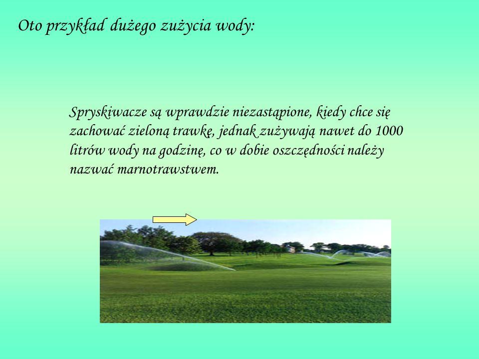 Oto przykład dużego zużycia wody: Spryskiwacze są wprawdzie niezastąpione, kiedy chce się zachować zieloną trawkę, jednak zużywają nawet do 1000 litró