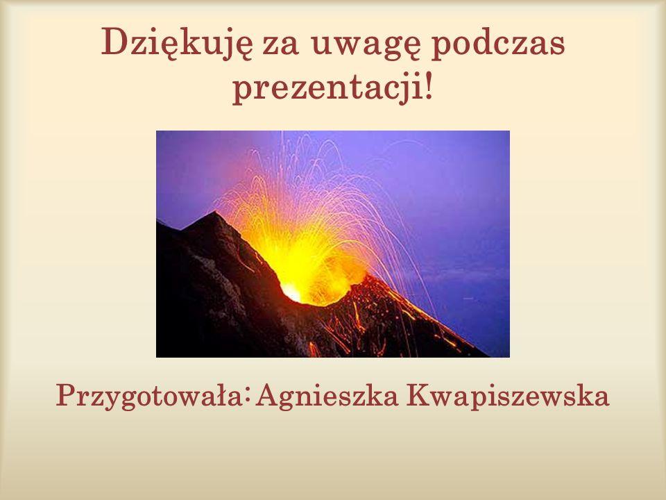 Dziękuję za uwagę podczas prezentacji! Przygotowała: Agnieszka Kwapiszewska