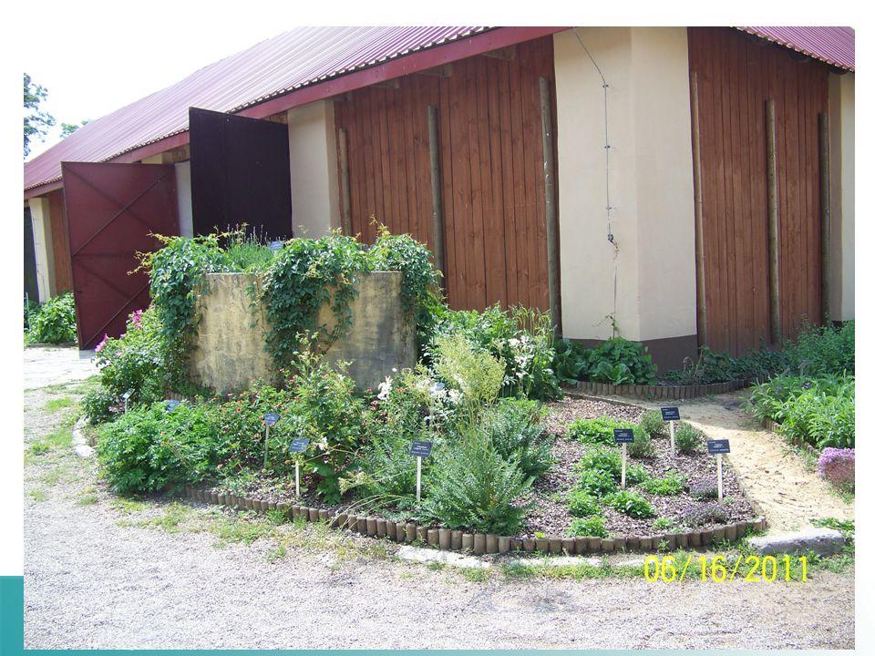 Centrum Praktycznego Szkolenia Przetwórstwa Zbóż