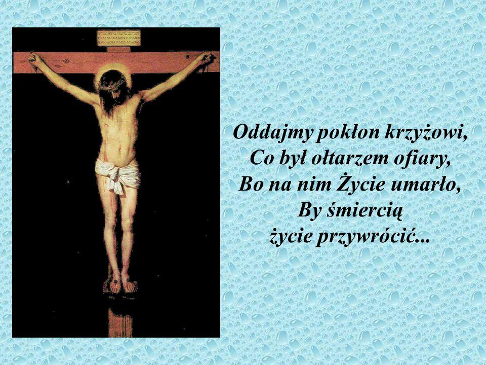 Oddajmy pokłon krzyżowi, Co był ołtarzem ofiary, Bo na nim Życie umarło, By śmiercią życie przywrócić...