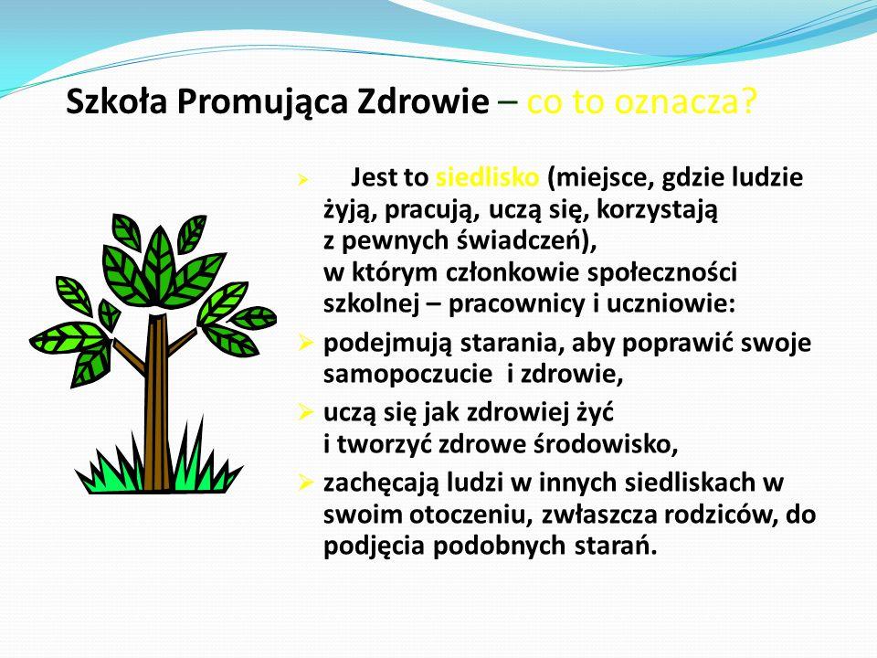 Związki szkoły promującej zdrowie z innymi siedliskami Szkoła zdrowie kościół Osiedla Małe i blokowiska Domy kulturyInne szkołyprzedsiębiorstwa