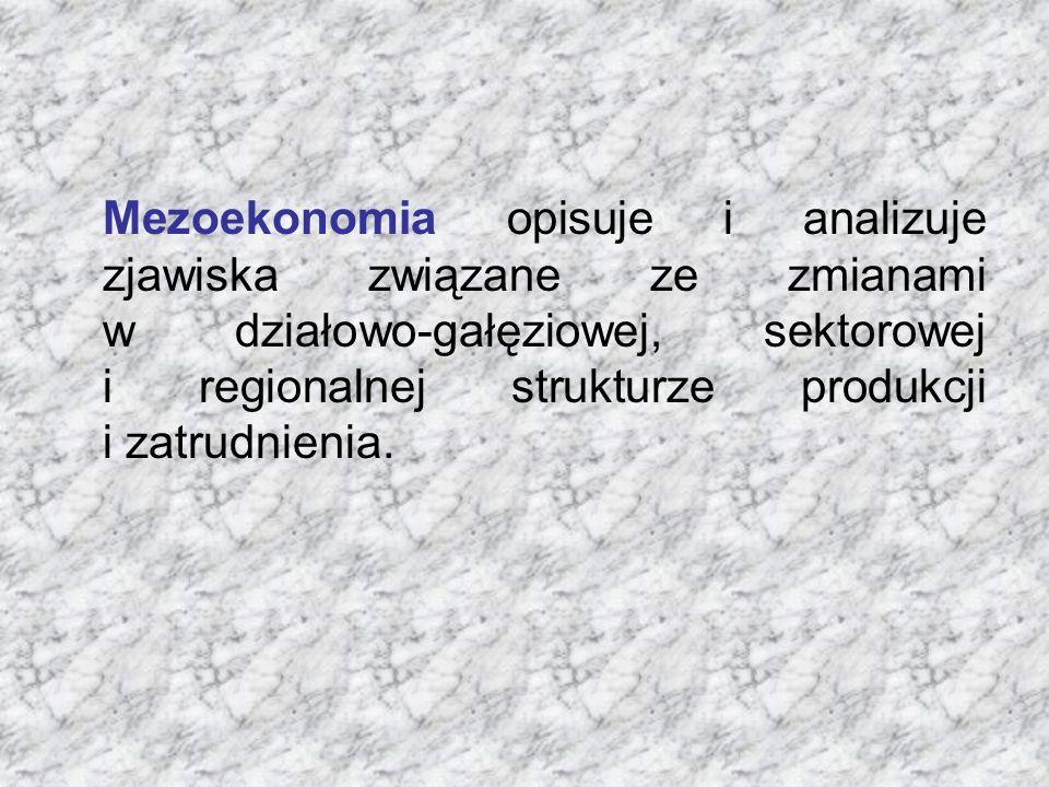 Mezoekonomia opisuje i analizuje zjawiska związane ze zmianami w działowo-gałęziowej, sektorowej i regionalnej strukturze produkcji i zatrudnienia.