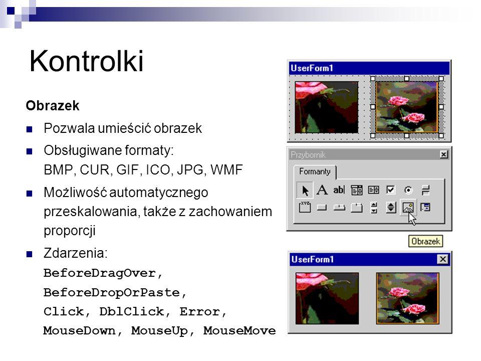 Kontrolki Obrazek Pozwala umieścić obrazek Obsługiwane formaty: BMP, CUR, GIF, ICO, JPG, WMF Możliwość automatycznego przeskalowania, także z zachowaniem proporcji Zdarzenia: BeforeDragOver, BeforeDropOrPaste, Click, DblClick, Error, MouseDown, MouseUp, MouseMove