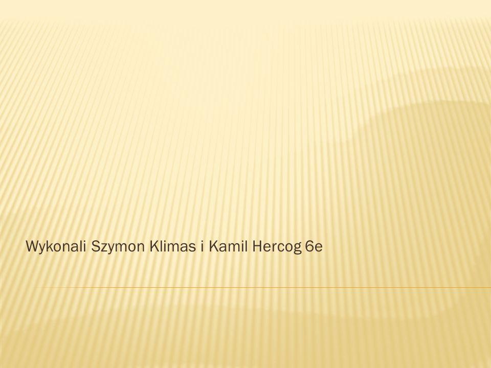 Wykonali Szymon Klimas i Kamil Hercog 6e