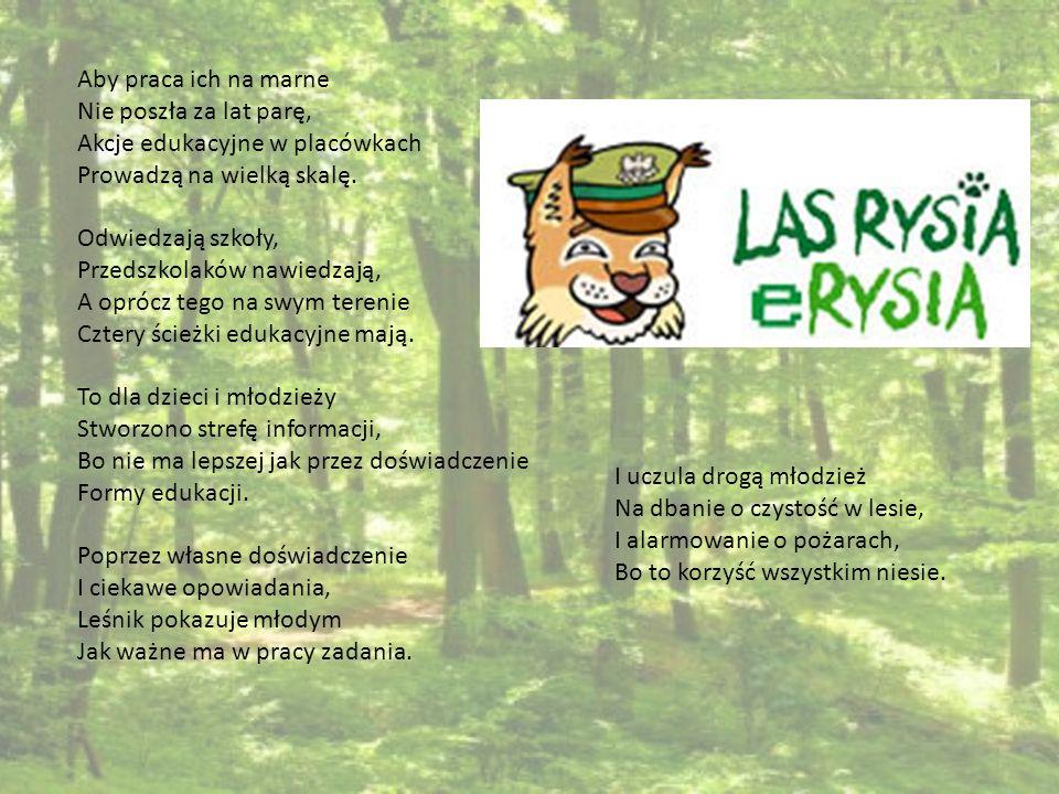 W Gwoźdźcu oprócz lasów zielonych Inną formę współpracy spotkamy, Lasy Państwowe z Brzeska nam pomogły I ścieżkę spacerowo-dydaktyczną teraz mamy.