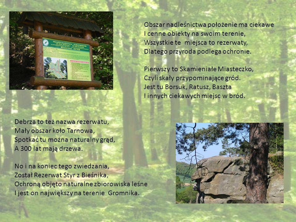 Obszar nadleśnictwa położenie ma ciekawe I cenne obiekty na swoim terenie, Wszystkie te miejsca to rezerwaty, Dlatego przyroda podlega ochronie. Pierw